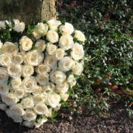 12072870-heart-shaped-sympathy-flower-arrangement-with-white-roses-near-a-tree-f61231134b9f86c13595cc3ad46eb4cc.jpg